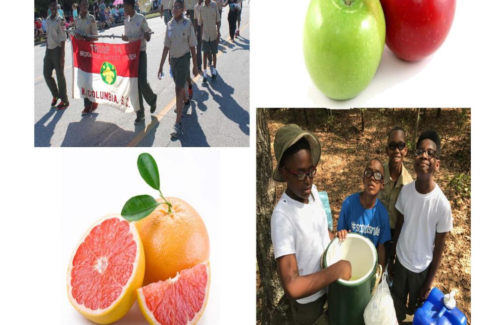 Boy Scout Troop 74's Annual Fruit Sale